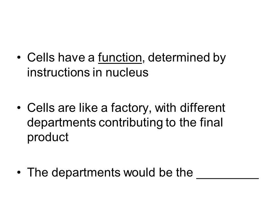 Cells have a function, determined by instructions in nucleus Cells are like a factory, with different departments contributing to the final product Th