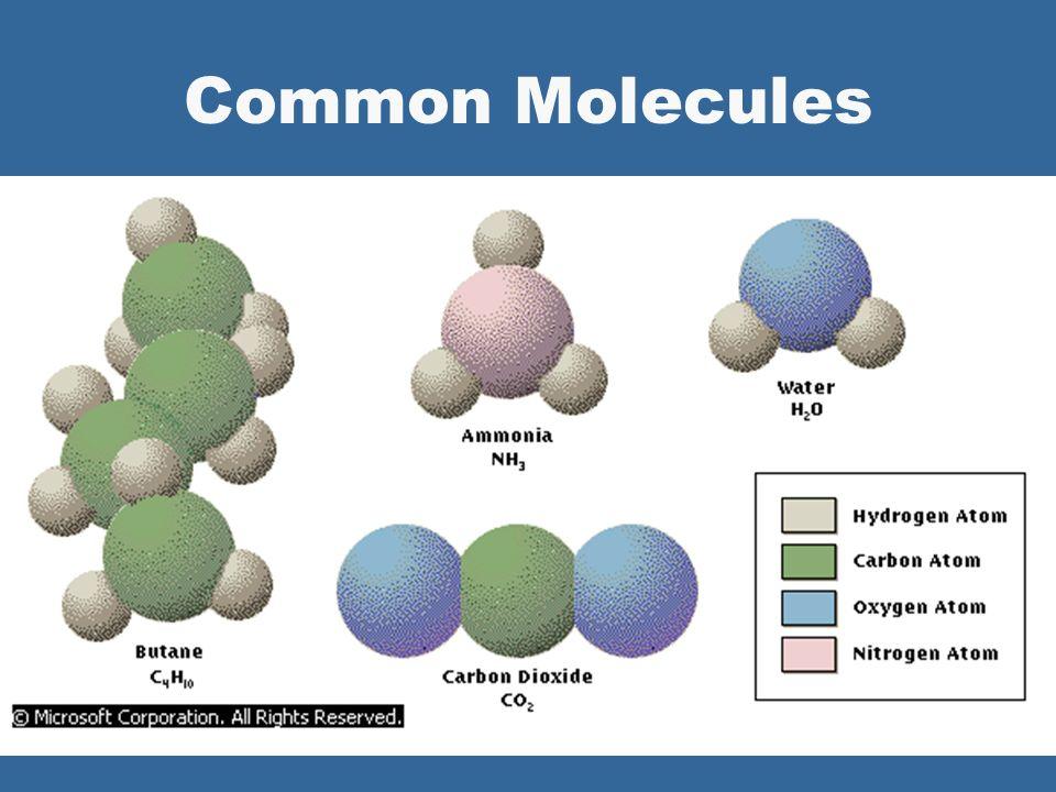 Units of Matter ….. l Atoms l Elements l Compounds & Molecules lClC, O, H, N, S lClCO 2, H 2 0, C 6 H 12 0 6