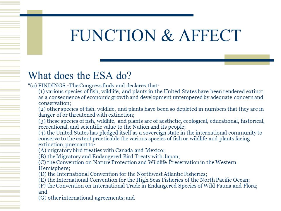 FUNCTION & AFFECT What does the ESA do.