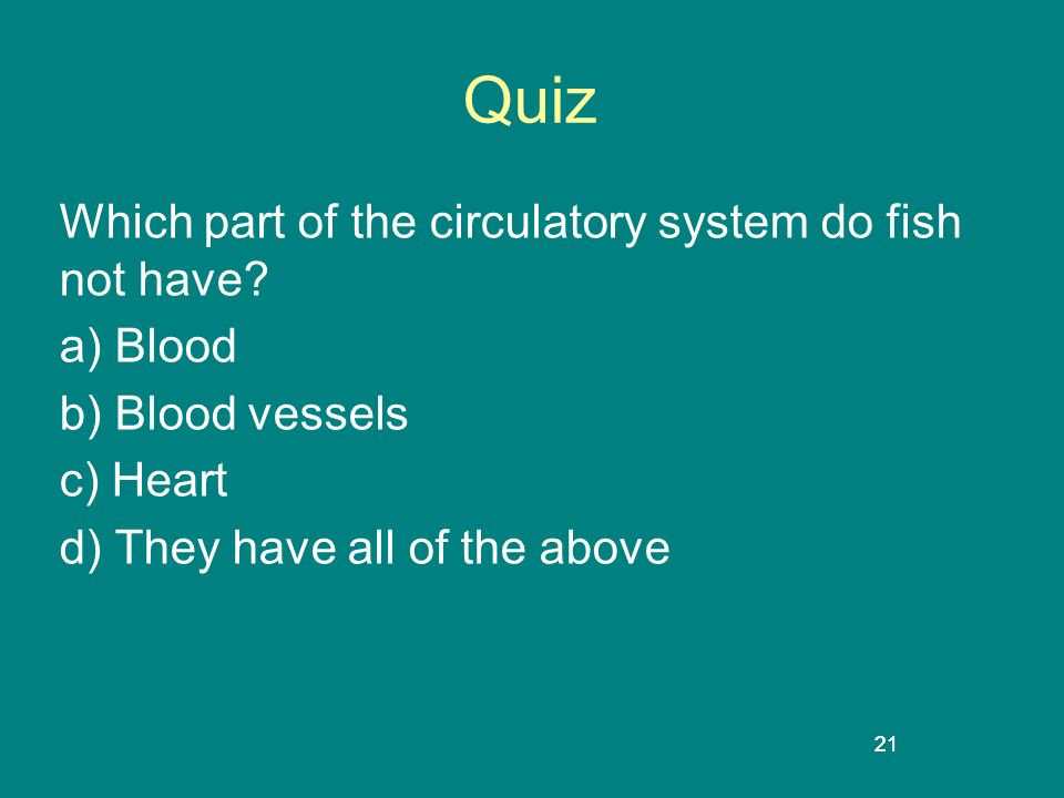 21 Quiz Which part of the circulatory system do fish not have? a) Blood b) Blood vessels c) Heart d) They have all of the above 21