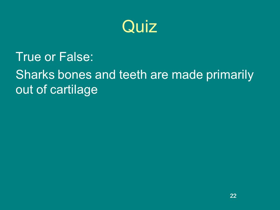 22 Quiz True or False: Sharks bones and teeth are made primarily out of cartilage 22