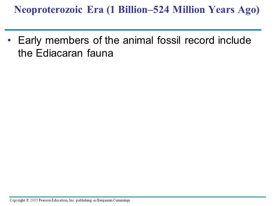 Copyright © 2005 Pearson Education, Inc. publishing as Benjamin Cummings Neoproterozoic Era (1 Billion–524 Million Years Ago) Early members of the ani