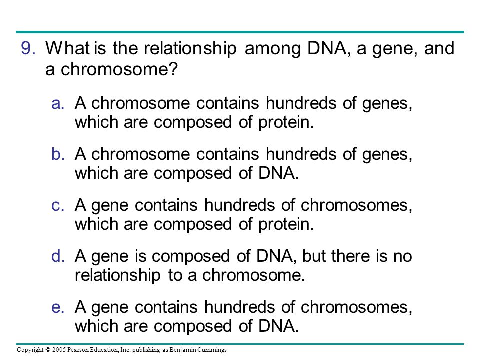 Copyright © 2005 Pearson Education, Inc. publishing as Benjamin Cummings 9.What is the relationship among DNA, a gene, and a chromosome? a.A chromosom