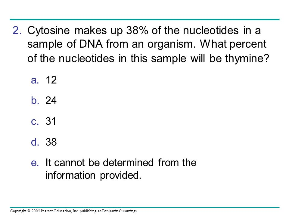 Copyright © 2005 Pearson Education, Inc. publishing as Benjamin Cummings 2.Cytosine makes up 38% of the nucleotides in a sample of DNA from an organis