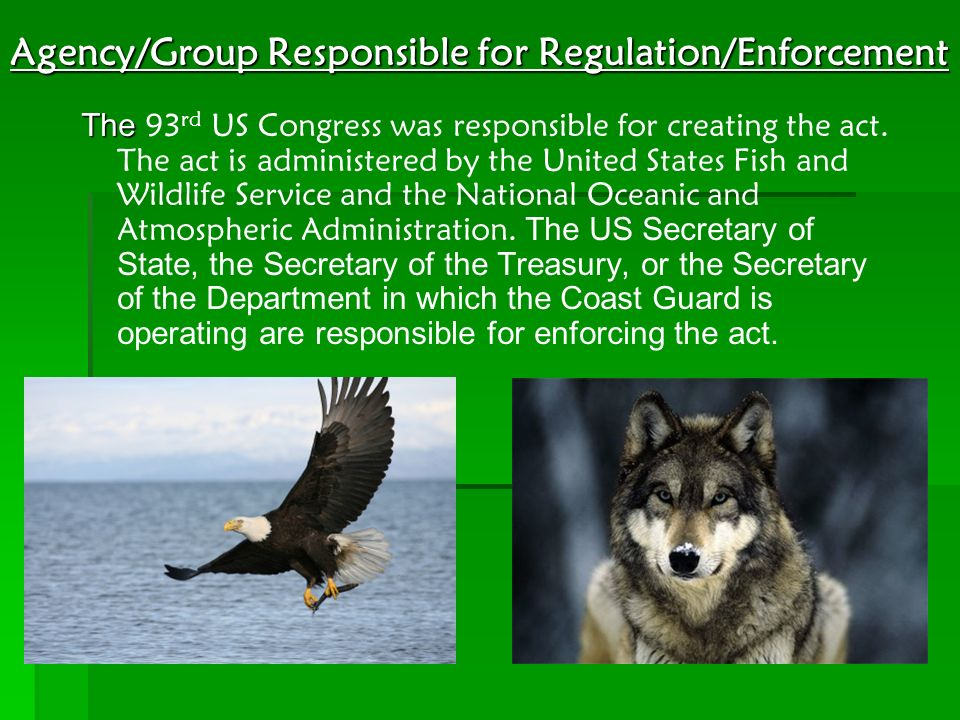 Agency/Group Responsible for Regulation/Enforcement The The 93 rd US Congress was responsible for creating the act. The act is administered by the Uni
