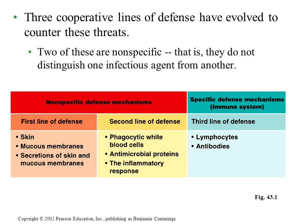 Antibodies constitute a group of globular serum proteins called immunoglobins (Igs).