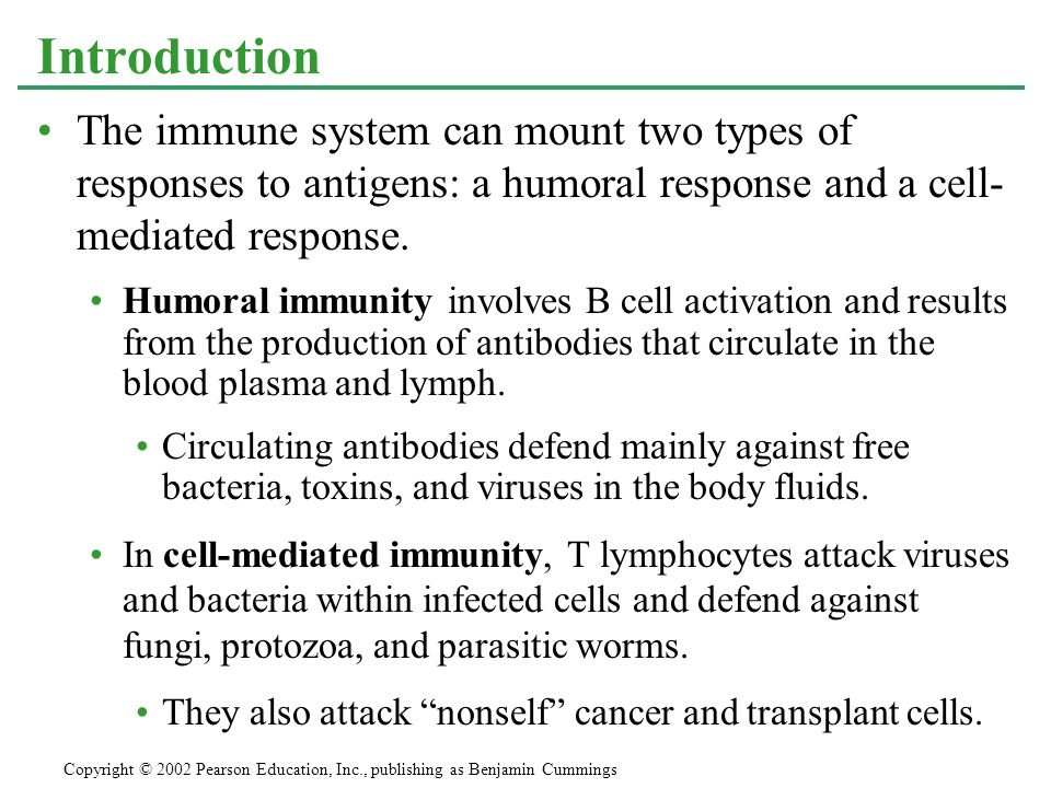The immune system can mount two types of responses to antigens: a humoral response and a cell- mediated response. Humoral immunity involves B cell act