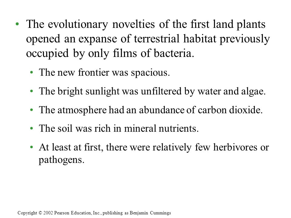 The evolutionary novelties of the first land plants opened an expanse of terrestrial habitat previously occupied by only films of bacteria. The new fr