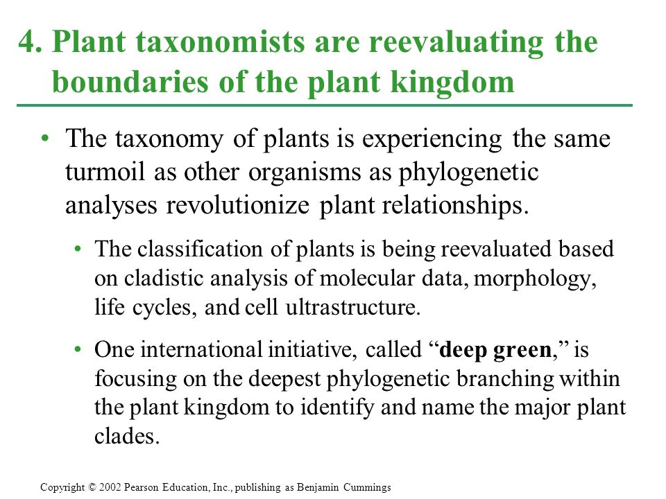 The taxonomy of plants is experiencing the same turmoil as other organisms as phylogenetic analyses revolutionize plant relationships. The classificat