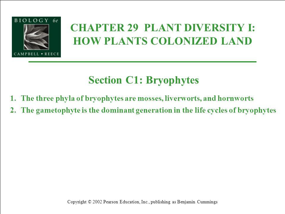 CHAPTER 29 PLANT DIVERSITY I: HOW PLANTS COLONIZED LAND Copyright © 2002 Pearson Education, Inc., publishing as Benjamin Cummings Section C1: Bryophyt