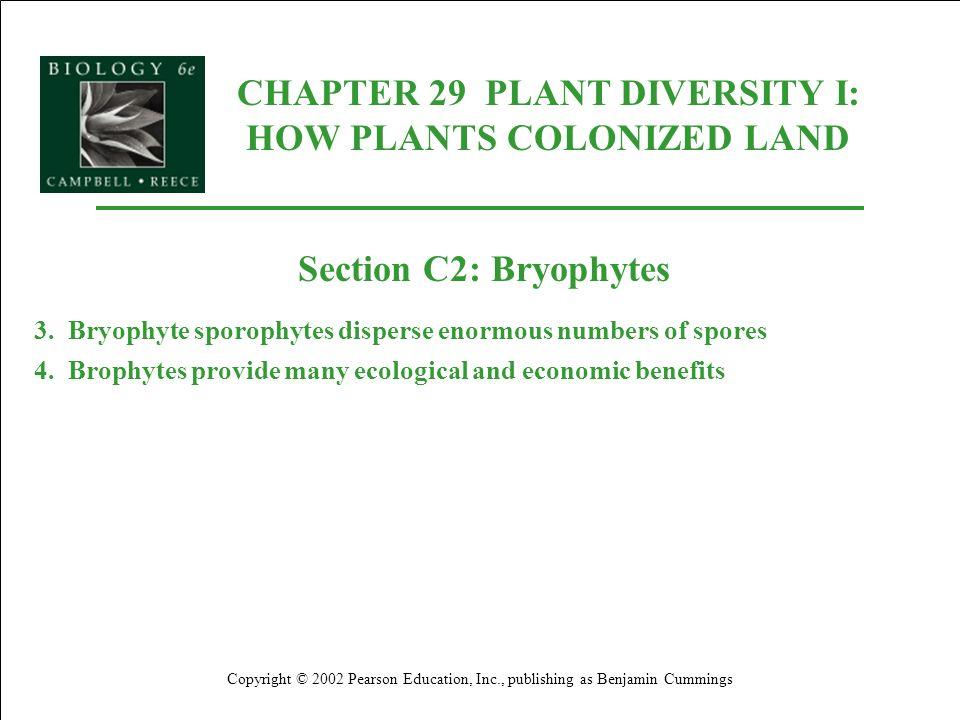 CHAPTER 29 PLANT DIVERSITY I: HOW PLANTS COLONIZED LAND Copyright © 2002 Pearson Education, Inc., publishing as Benjamin Cummings Section C2: Bryophyt