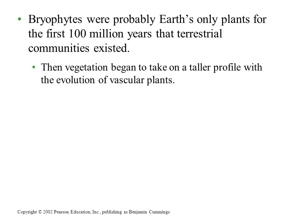 Bryophytes were probably Earths only plants for the first 100 million years that terrestrial communities existed. Then vegetation began to take on a t