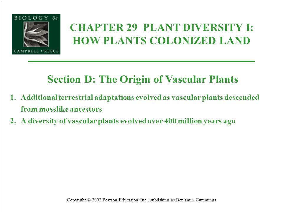 CHAPTER 29 PLANT DIVERSITY I: HOW PLANTS COLONIZED LAND Copyright © 2002 Pearson Education, Inc., publishing as Benjamin Cummings Section D: The Origi