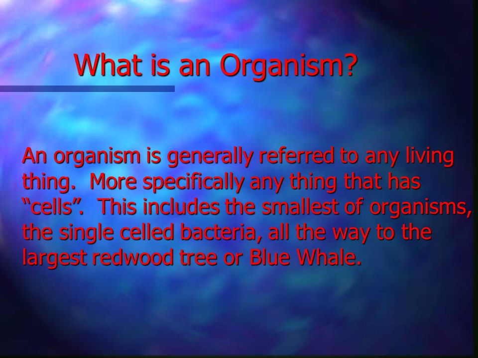 Classification of Organisms Students should be able to: * Understand why a classification system is important * Understand that there are a variety of ways to classify organisms organisms * Understand the origins of our modern classification system Appropriate for grades (5-9) (5-9) Developed by: Andrew Leech