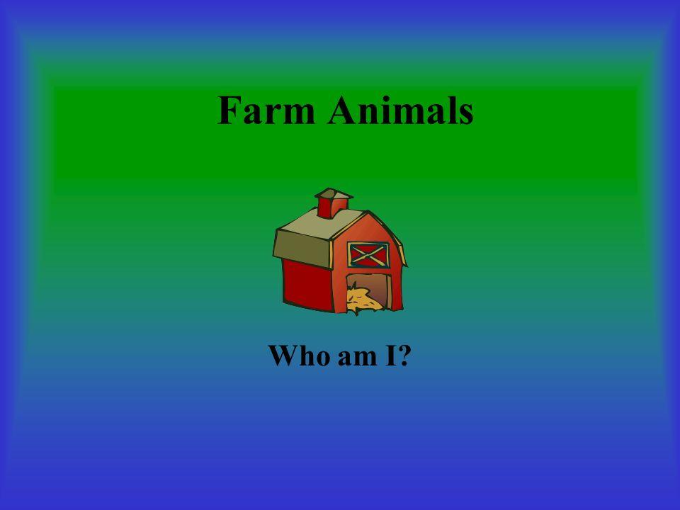 Farm Animals Who am I?
