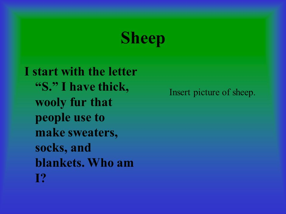 Sheep I start with the letter S. I have thick, wooly fur that people use to make sweaters, socks, and blankets. Who am I? Insert picture of sheep.
