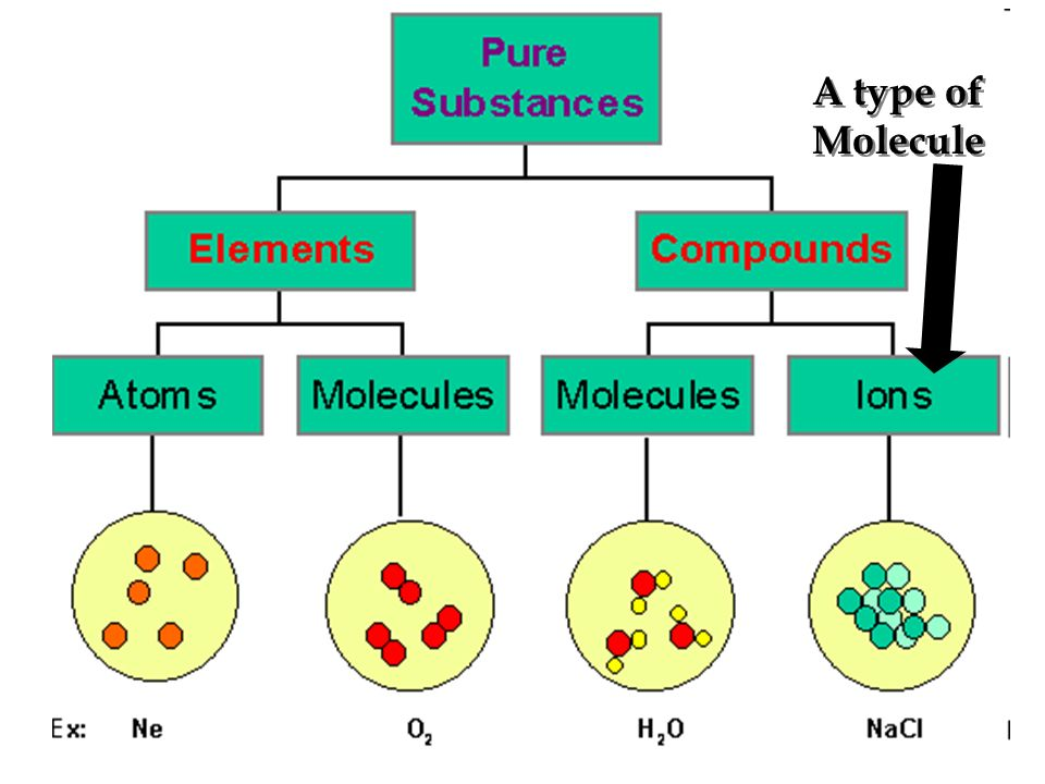 A type of Molecule