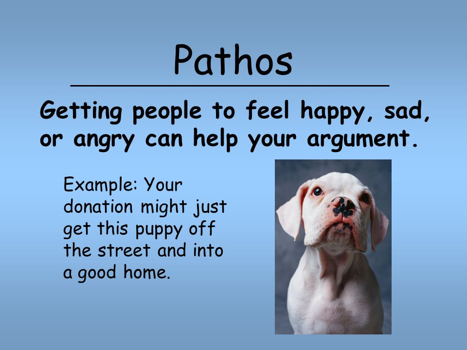 Pathos Example: Your donation might just get this puppy off the street and into a good home.