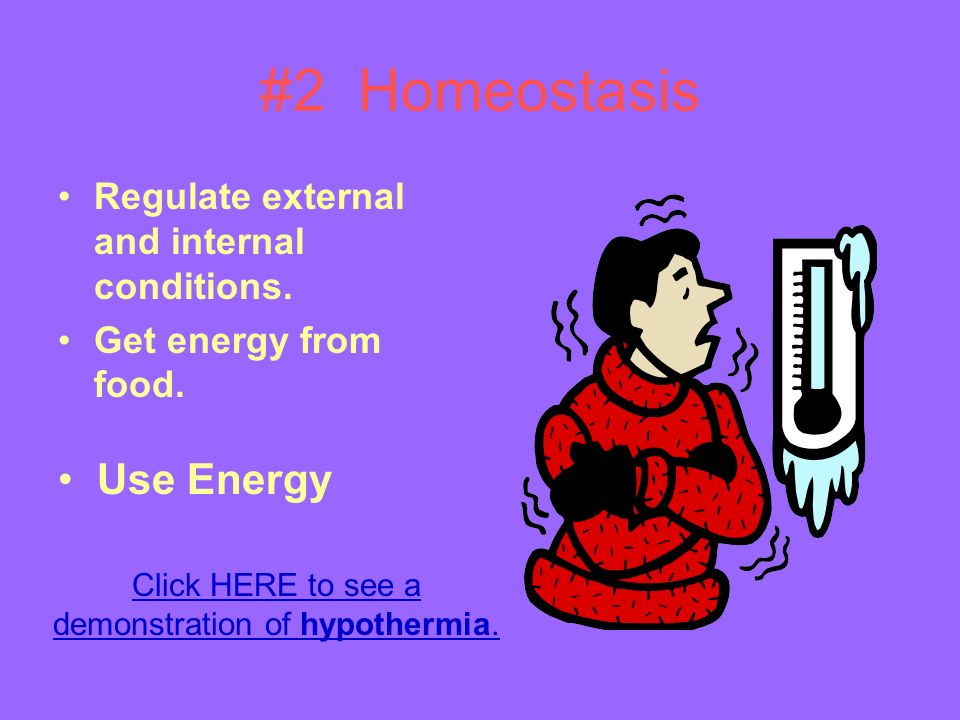 #2 Homeostasis Regulate external and internal conditions.