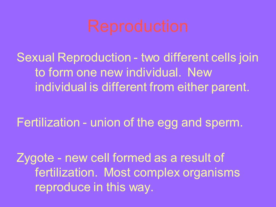 Reproduction Sexual Reproduction - two different cells join to form one new individual.