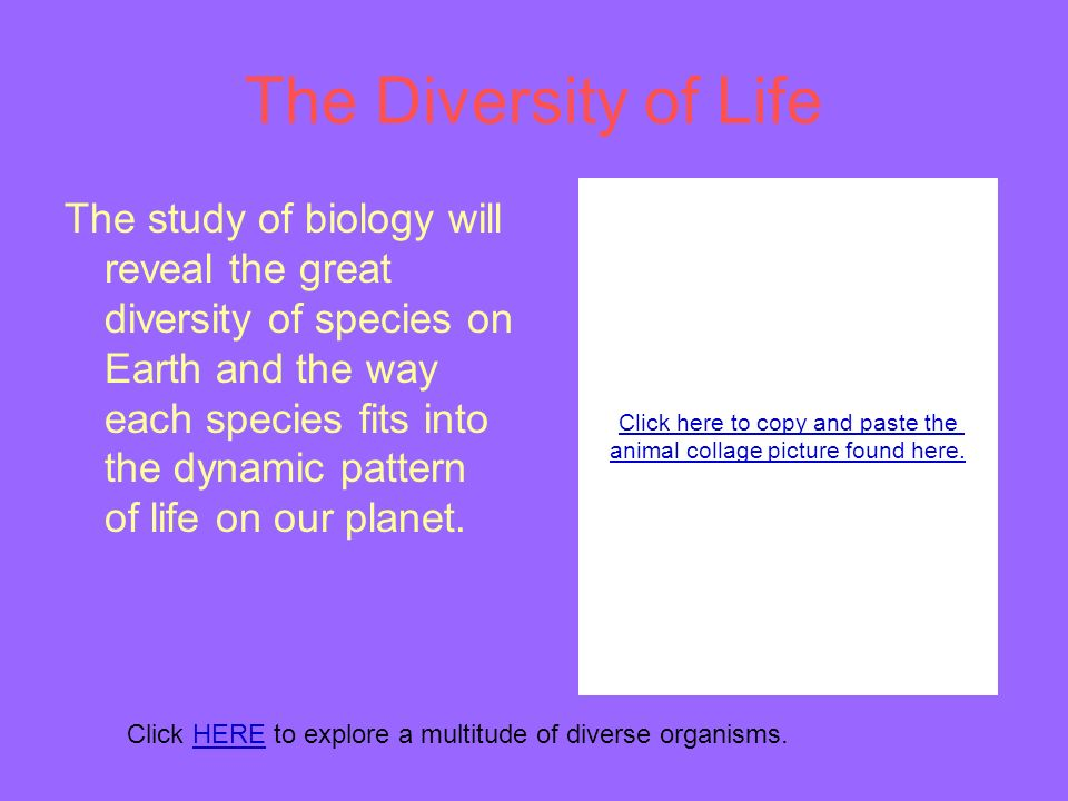 The Diversity of Life The study of biology will reveal the great diversity of species on Earth and the way each species fits into the dynamic pattern of life on our planet.