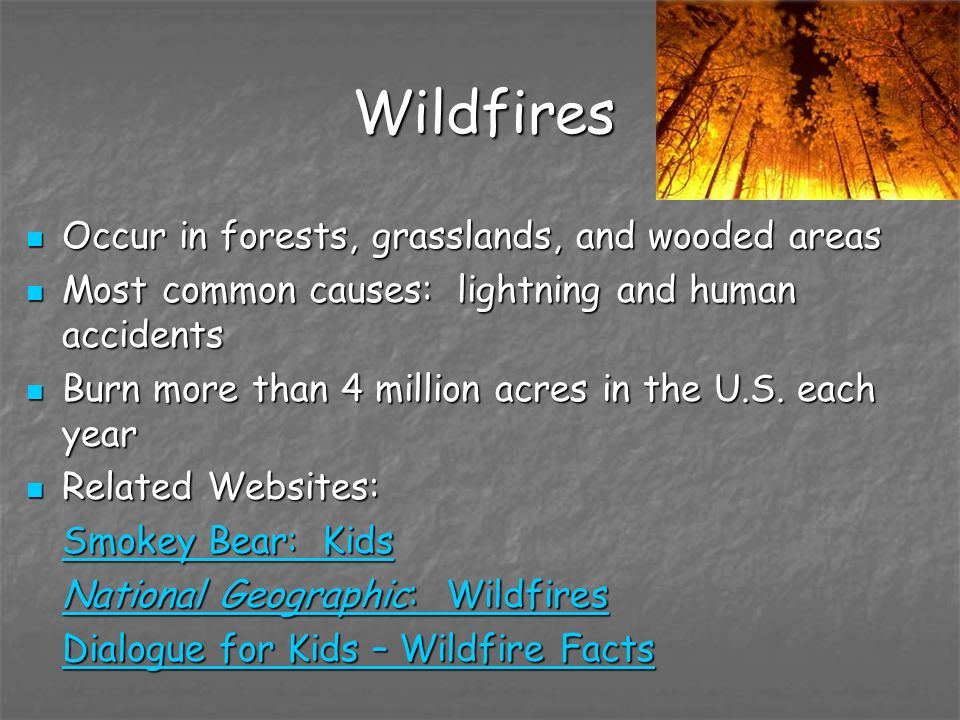 Wildfires Occur in forests, grasslands, and wooded areas Occur in forests, grasslands, and wooded areas Most common causes: lightning and human accide