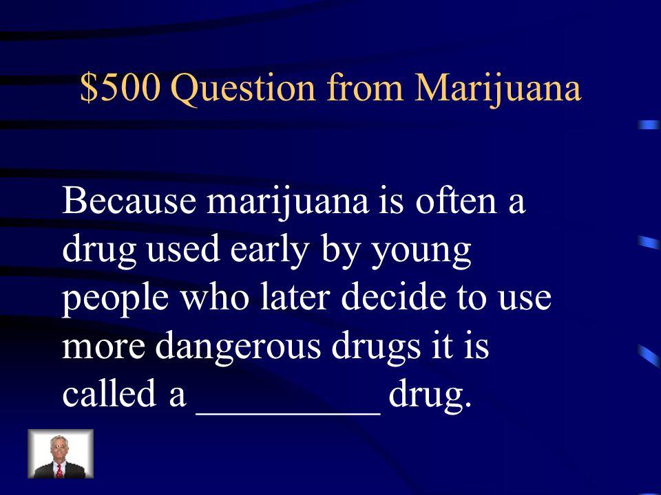 $400 Answer from Marijuana Cannabis sativa
