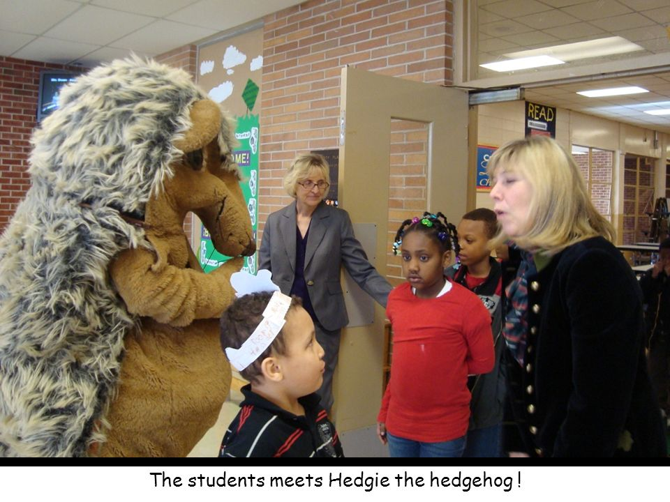 The students meets Hedgie the hedgehog !