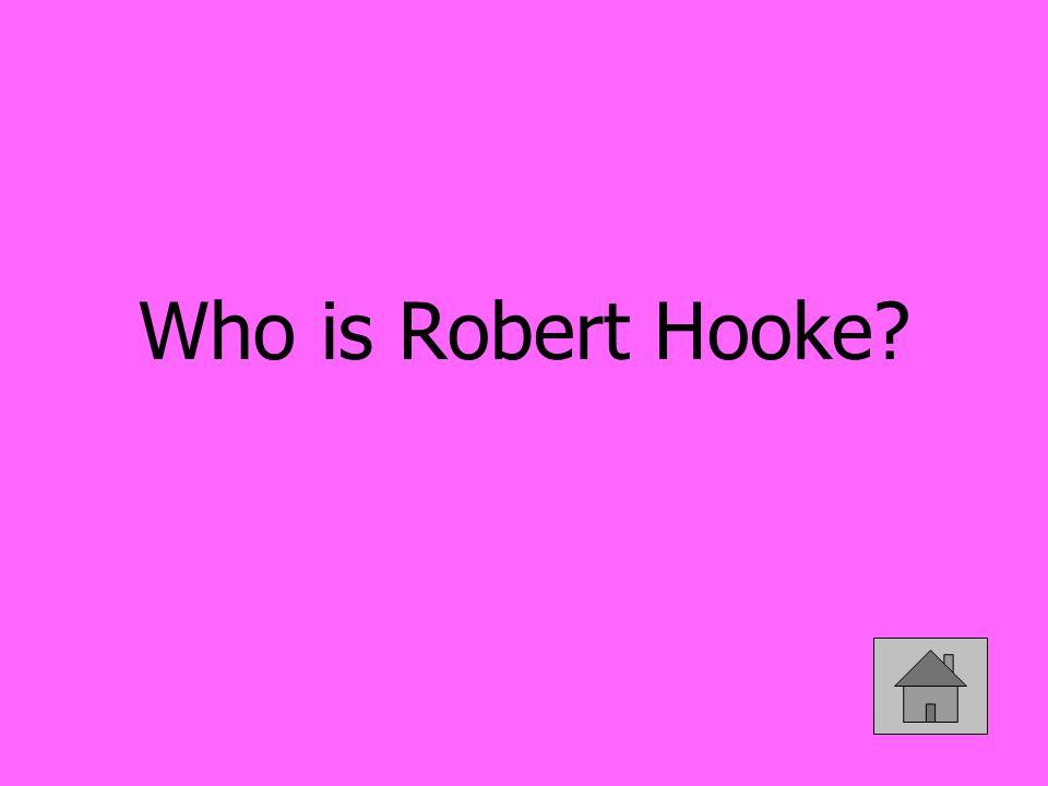Who is Robert Hooke?
