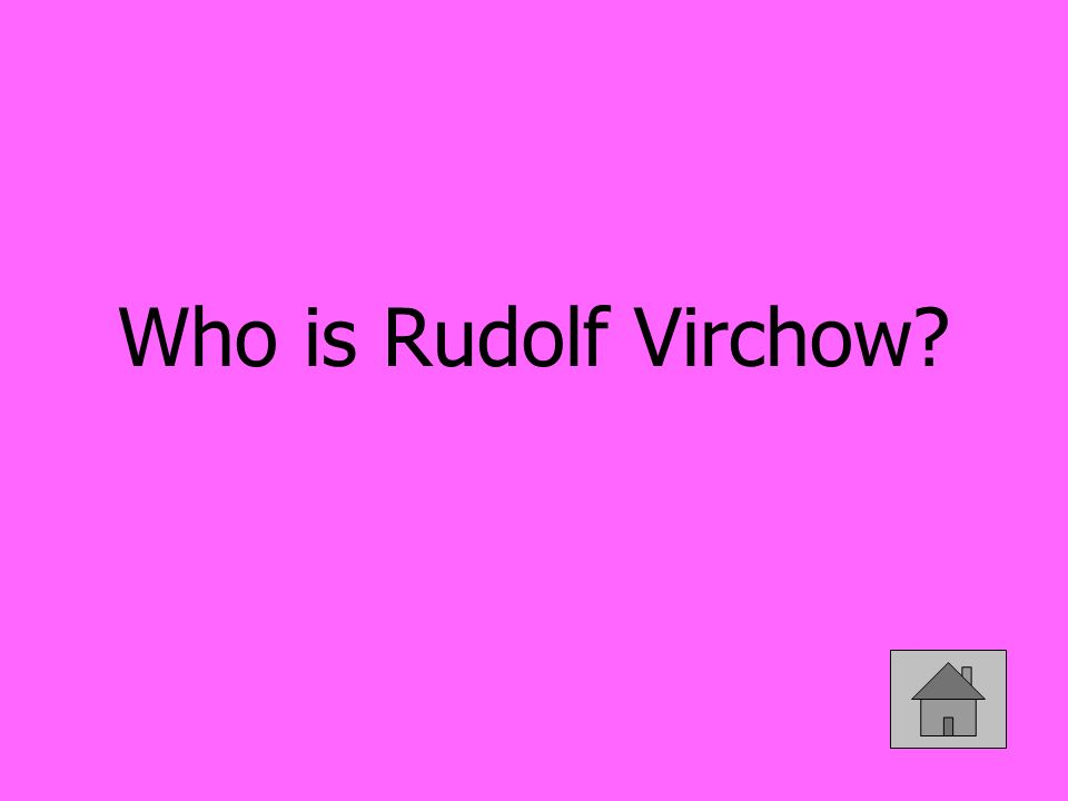 Who is Rudolf Virchow?