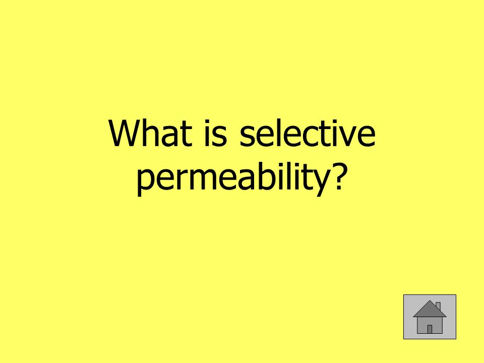 What is selective permeability?