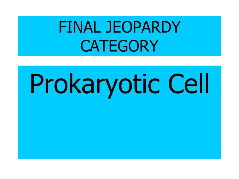 FINAL JEOPARDY CATEGORY Prokaryotic Cell