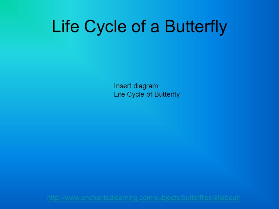 Life Cycle of a Butterfly http://www.enchantedlearning.com/subjects/butterflies/allabout/ Insert diagram: Life Cycle of Butterfly