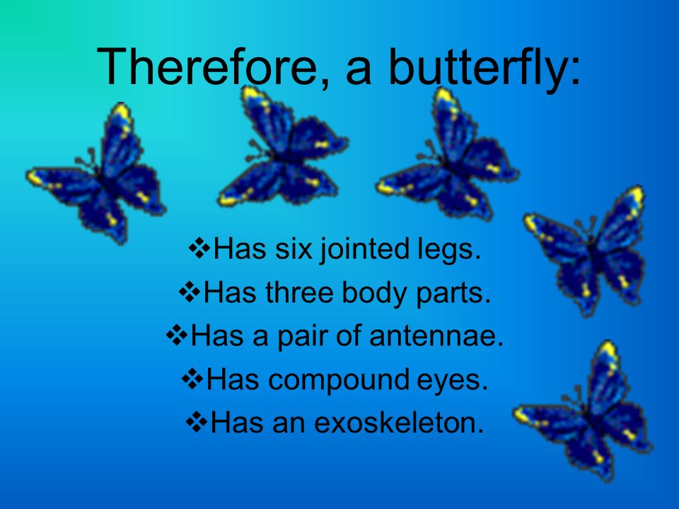 The Parts of a Butterfly http://www.enchantedlearning.com/subjects/butterflies/allabouthttp://www.enchantedlearning.com/subjects/butterflies/allabout/ Insert picture of Butterfly Anatomy