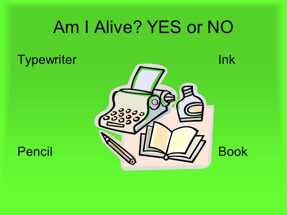 Am I Alive? YES or NO TypewriterInk PencilBook