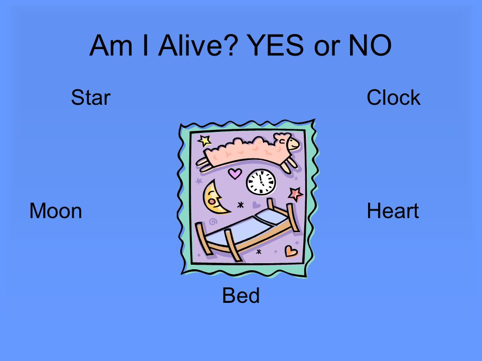 Am I Alive? YES or NO StarClock MoonHeart Bed