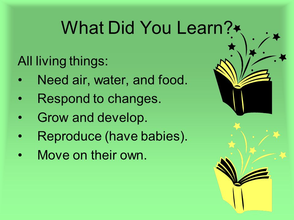 What Did You Learn? All living things: Need air, water, and food. Respond to changes. Grow and develop. Reproduce (have babies). Move on their own.