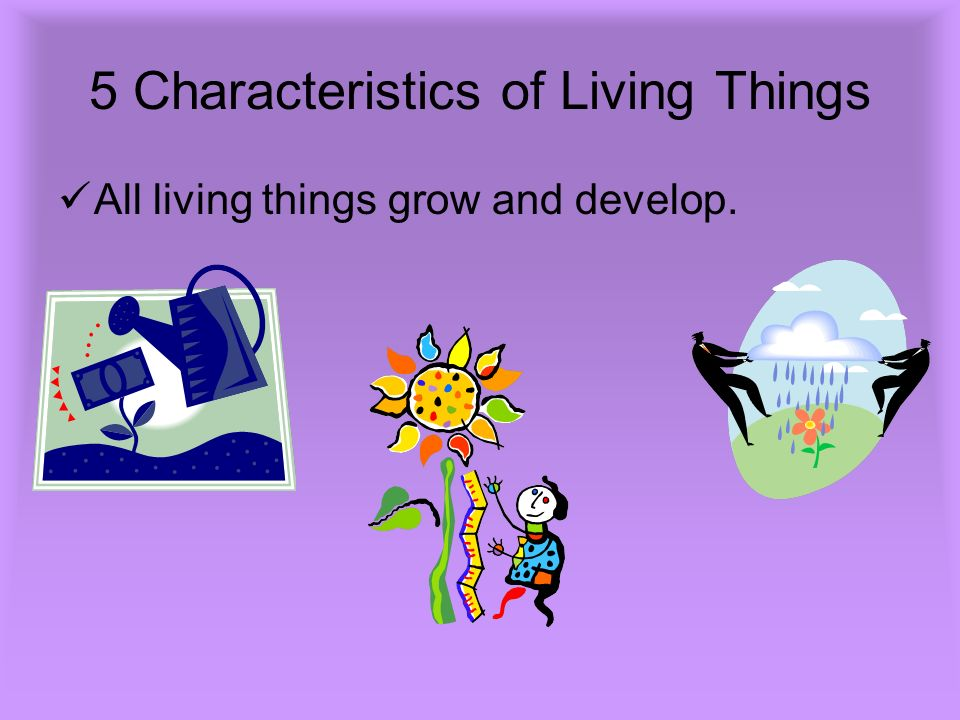 5 Characteristics of Living Things All living things grow and develop.