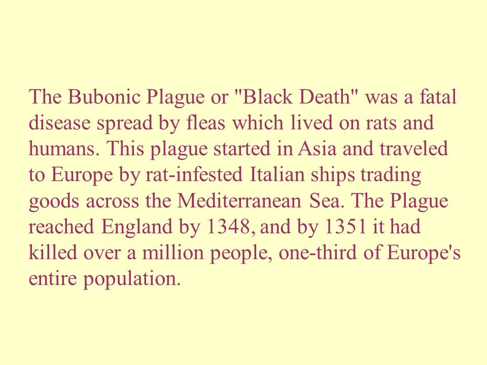 The Bubonic Plague or Black Death was a fatal disease spread by fleas which lived on rats and humans.