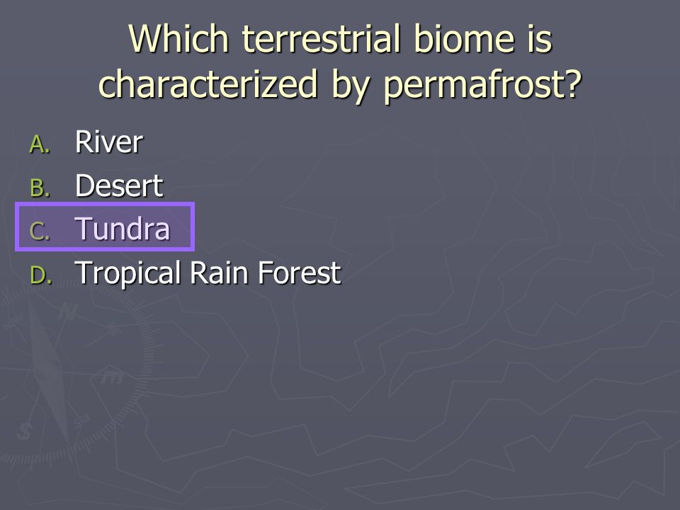 Which terrestrial biome is characterized by permafrost? A. River B. Desert C. Tundra D. Tropical Rain Forest