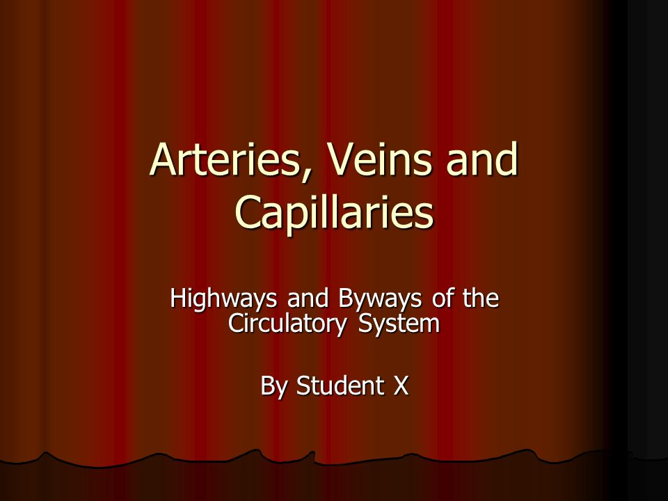 Arteries, Veins and Capillaries Highways and Byways of the Circulatory System By Student X