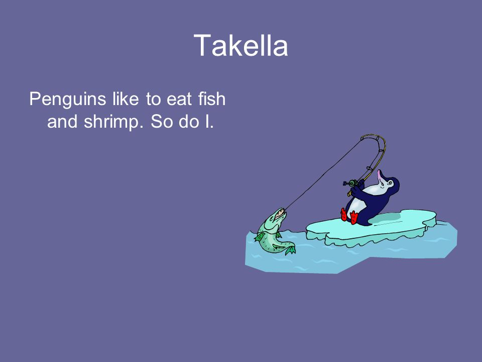 Takella Penguins like to eat fish and shrimp. So do I.