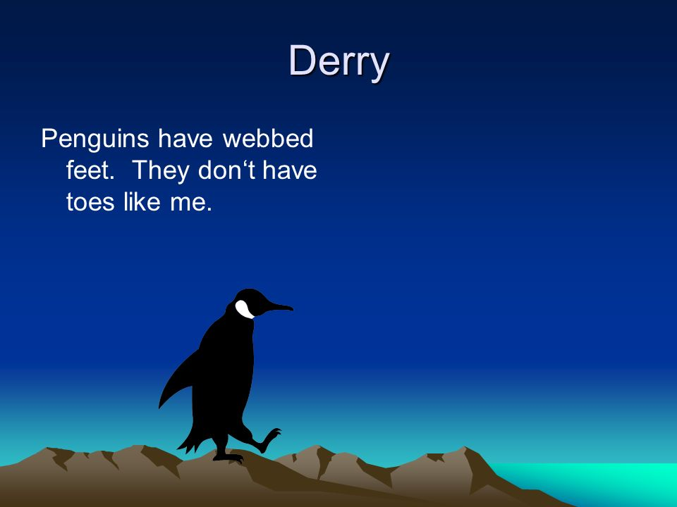 Derry Penguins have webbed feet. They dont have toes like me.