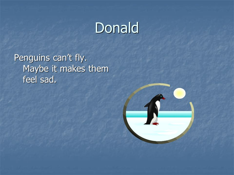 Cynondria Penguins live where it is cold.They play in the snow.