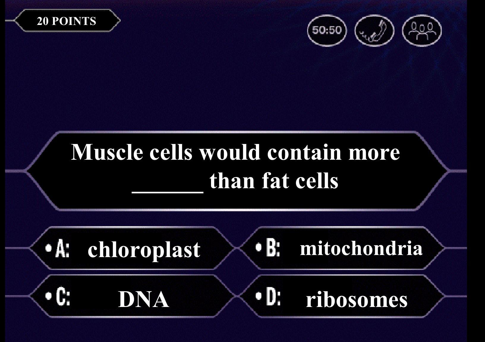 The basic unit of life is a(n) cell airtissue 20 POINTS Muscle cells would contain more ______ than fat cells chloroplast mitochondria DNAribosomes