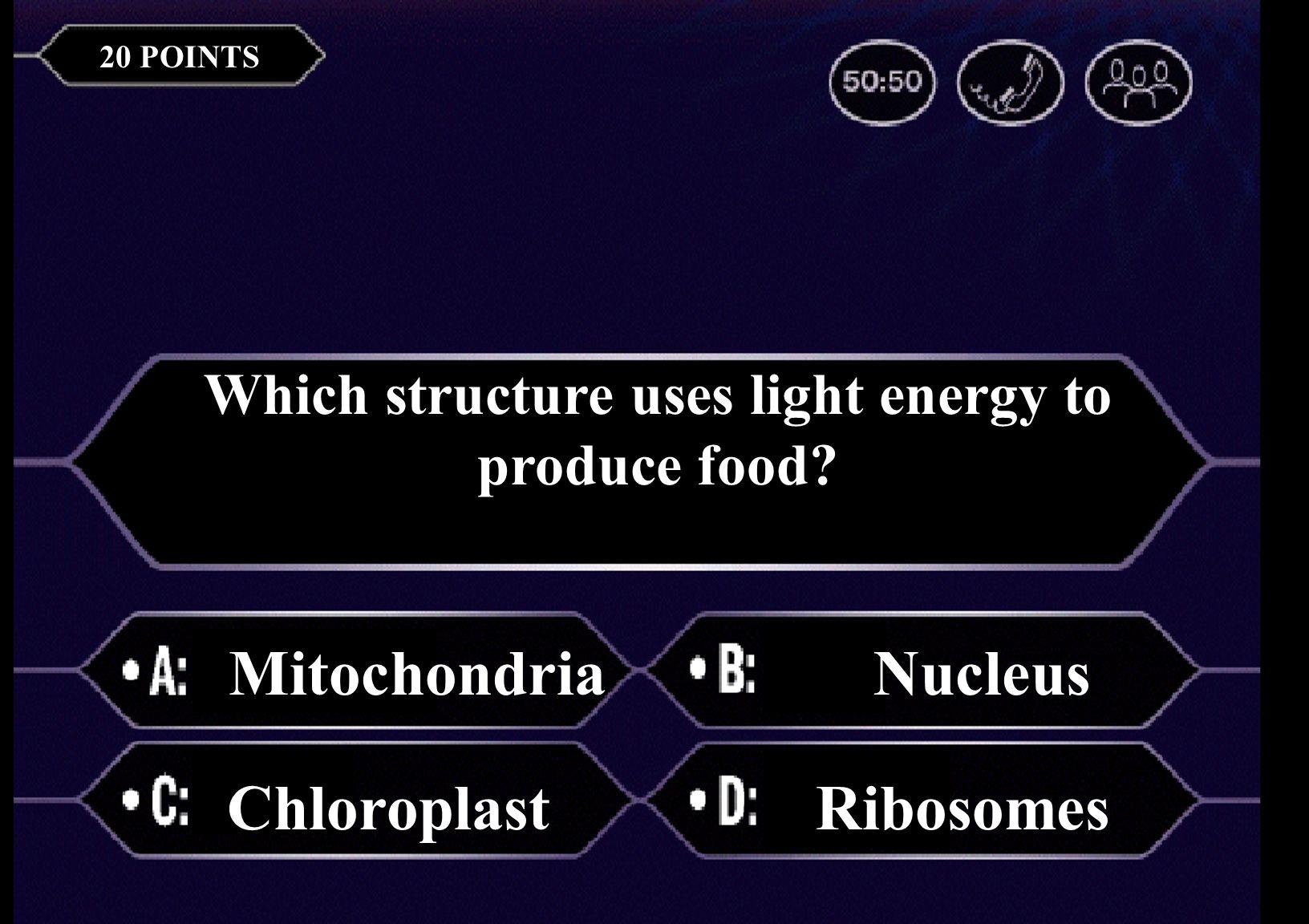 The basic unit of life is a(n) cell airtissue 20 POINTS Which structure uses light energy to produce food.