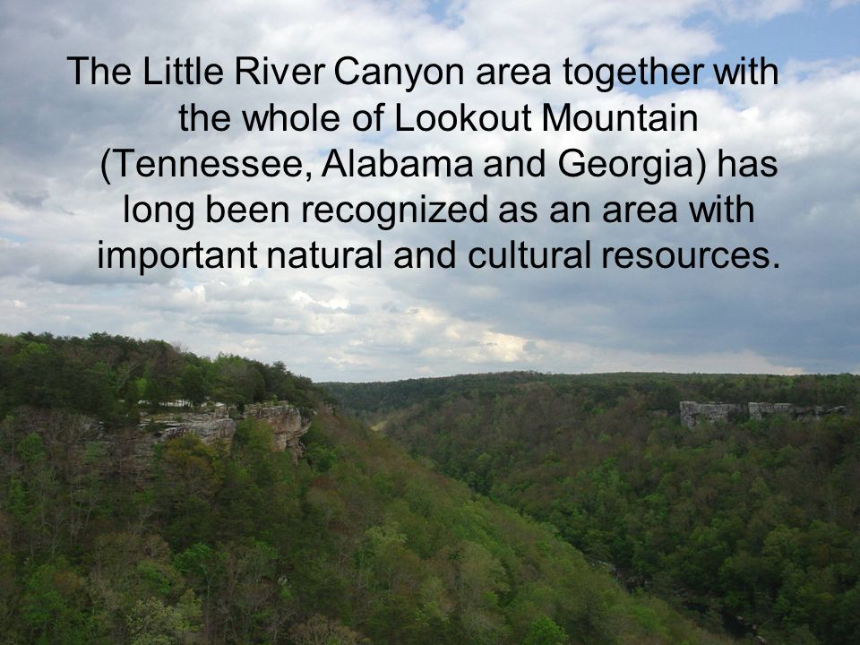 The Little River Canyon area together with the whole of Lookout Mountain (Tennessee, Alabama and Georgia) has long been recognized as an area with imp