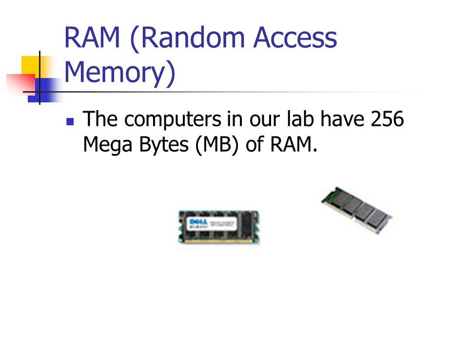 Bits & Bytes Floppy1.44 megabytes CD700 megabytes (486 floppy disks) Flash Drive2 gigabytes (2.9 CDs) DVD4.7 gigabytes (2.35 flash drives) Hard Drive80 gigabytes (17 DVDs)
