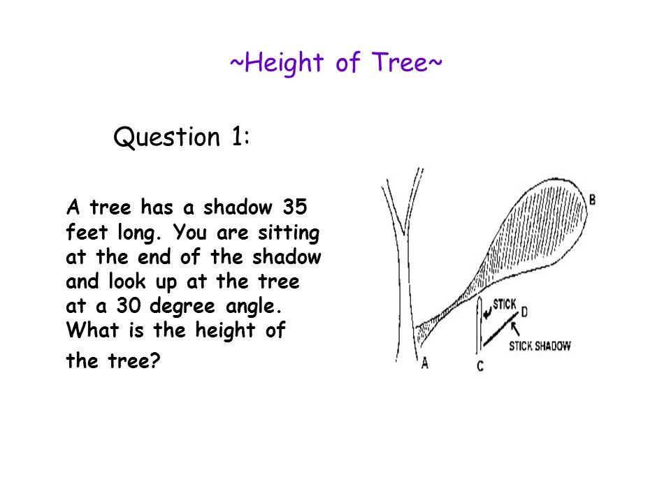 ~ SOH CAH TOA~ Sine = opposite hypotenuse Cosine= adjacent hypotenuse Tangent= opposite hypotenuse