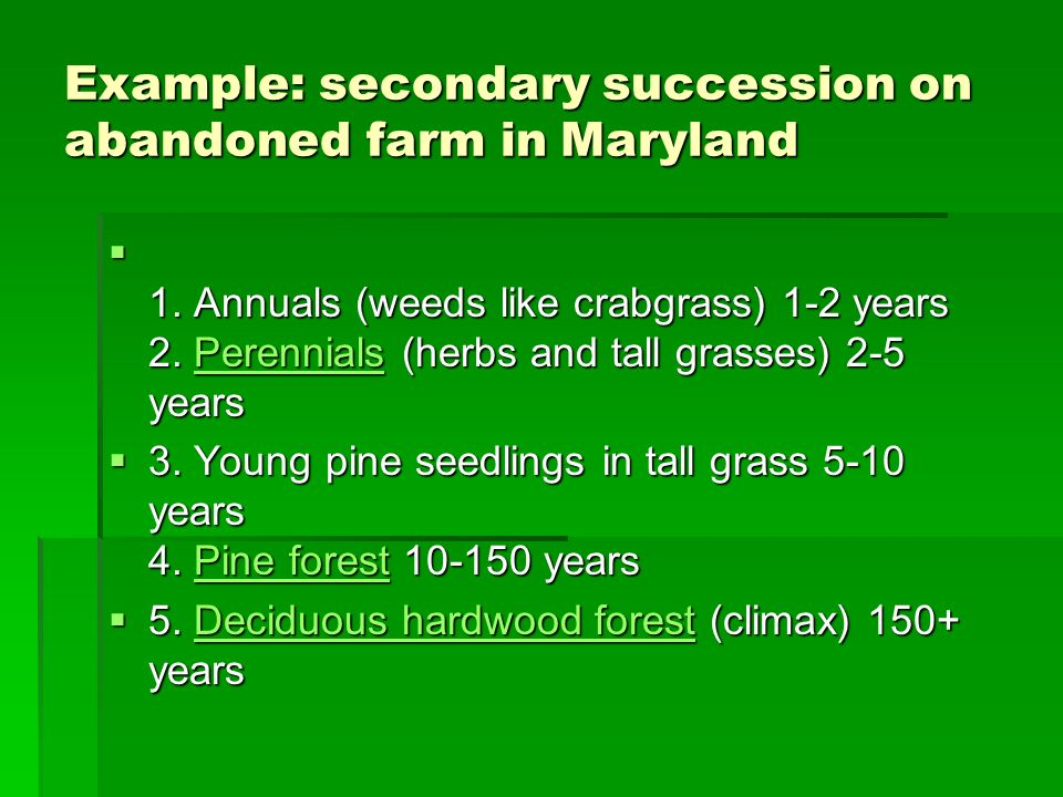 Example: secondary succession on abandoned farm in Maryland 1. Annuals (weeds like crabgrass) 1-2 years 2. Perennials (herbs and tall grasses) 2-5 yea
